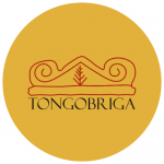 Logotipo Tongobriga